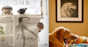 30 Pictures of Dogs at the Right Time